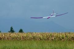 1_P1130397truffo-crop